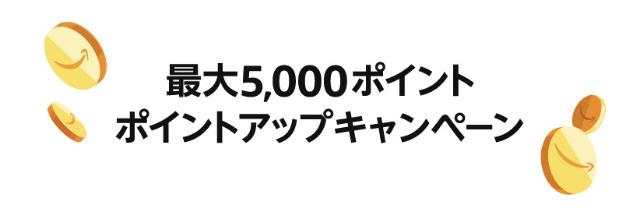 最大5000ポイントアップ